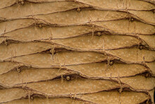 Detail Of The Bark Of A Palm Tree Showing The Repeated Texture.