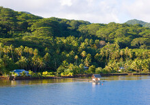 Tahaa Island, French Polynesia: Quaint Fishing Shack Extends From Pier Into The Pacific With Lush Green Hills In The Background At Sunrise