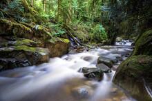 Cypress Creek, Cypress Provincial Park, Canada