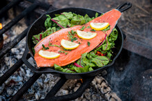 Cooking Salmon Fillets Over An Open Fire.