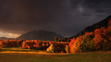 Clouds Briefly Break, Lighting The Fall Colors During A Rainstorm Over Mt Timpanogas.