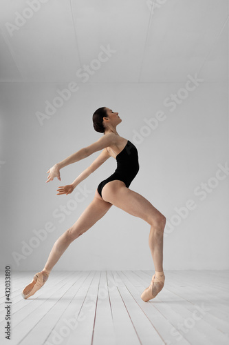Young beautiful skinny ballerina is posing in studio Fototapet