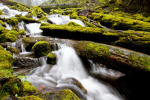 Scenic View Of Proxy Falls, Located In Willamette National Forest, Oregon.