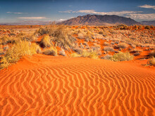 Rivulets In The Sand On A Red Colored Dune With Desert Grasses And Distant Mountains In The Namib Desert, Namibia