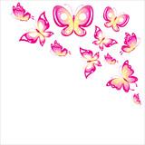 Fototapeta Motyle - butterfly797
