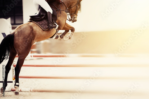 Tela The bay horse overcomes an obstacle.Show jumping