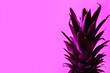 Leinwandbild Motiv Toned fresh pineapple on color background