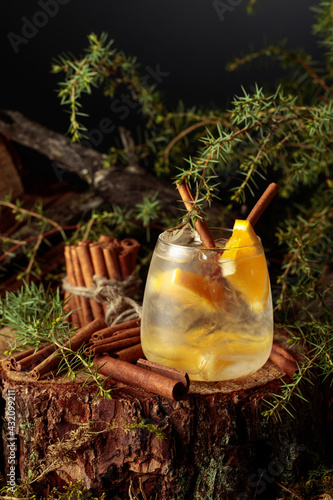 Obraz Gin and Tonic cocktail with orange and cinnamon. - fototapety do salonu