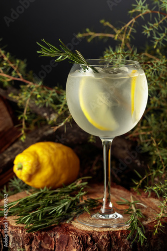 Obraz Gin and Tonic cocktail with lemon and rosemary. - fototapety do salonu