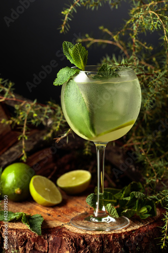 Obraz Gin and Tonic cocktail with lime and mint. - fototapety do salonu