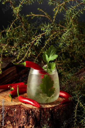 Obraz Gin and Tonic cocktail with red pepper and coriander. - fototapety do salonu