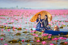 Two Beautiful Women Sailing On A Lake With Pink Lotus Flowers, Thailand
