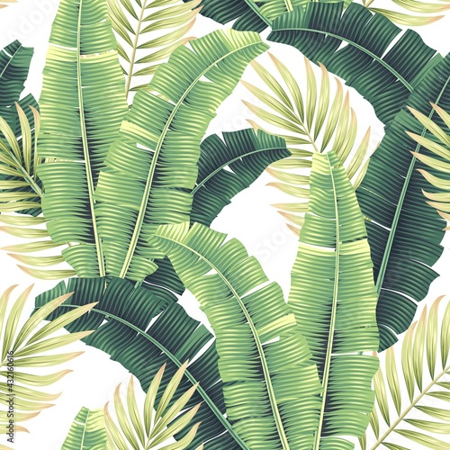 Vector seamles pattern with tropical palm leaves Poster Mural XXL