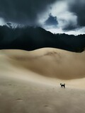 Fototapeta Kawa jest smaczna - sand mountain landscape
