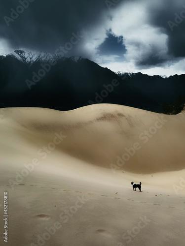 sand mountain landscape - fototapety na wymiar