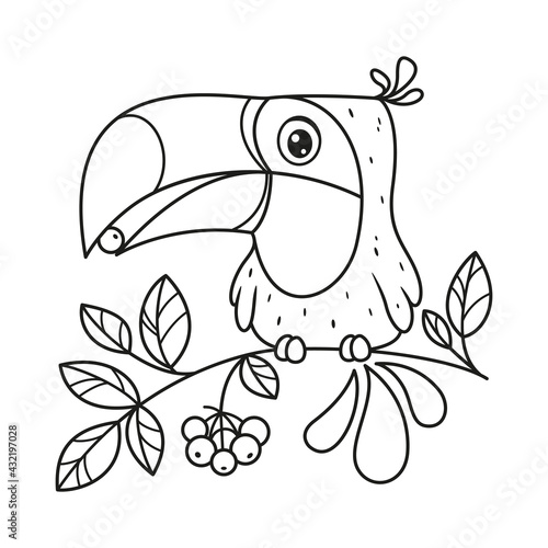 Fototapeta premium Toucan sits on branch and eats berry coloring page. Cartoon vector illustration
