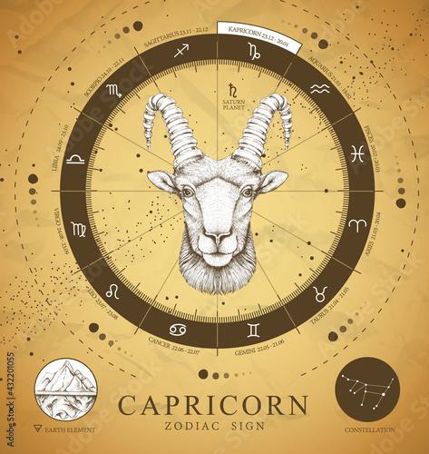Vintage magic witchcraft card with astrology Capricorn zodiac sign. Realistic hand drawing ram or mouflon head. Zodiac characteristic - fototapety na wymiar