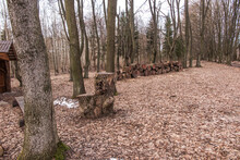A Camping Site In The Park Near The Church Of St. Piotr And Paweł On The Bug River In Świerzach In Eastern Poland,