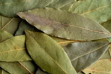 Closeup Of Bay Leaves
