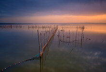 Typical Fishing System With Rods And Sticks, Of The Valencia Lagoon In Spain. Nice Image With Some Very Interesting Lines. Close To Sunset Time With An Impressive Cloudy Sky And Beautiful Colors.