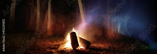 Fotografia Bonfire in the mystical forest at night, tree silhouettes in the dark