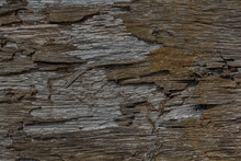 Relief Decayed Flaked Shanty Facade. Old Shabby Gnarled Dirty Rind Of Ancient Rural Country Wooden Raw Siding.Messy Aged Rustic Laths.Grungy Pitted Knotted Cracked Log Retro Fence For Ranch Hut Design