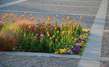 Ornamental Flower Beds On A Regular Floor Plan In The Middle Of A Square Made Of Granite Paving. L Shaped Flower Beds With Dry Ornamental Grasses And Lots Of Colorful Flowers Easter Decorations