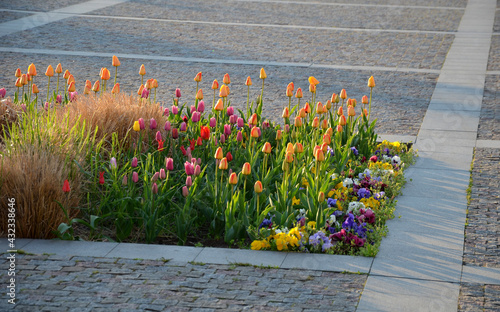 ornamental flower beds on a regular floor plan in the middle of a square made of granite paving Fototapeta
