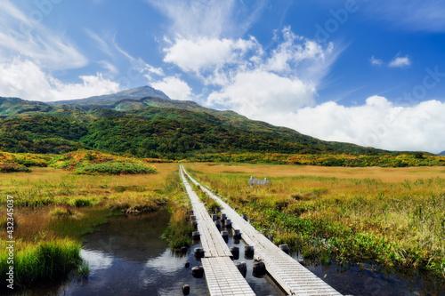 Obraz na plátně 秋の竜ヶ原湿原