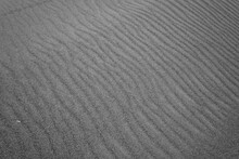 Grooves Created By Seeing In The Desert Sand Of A Beach Dune. Black And White Image