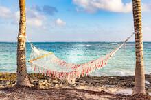 Hammock Between Palm Trees On Guardalavaca Beach, Holguin, Cuba