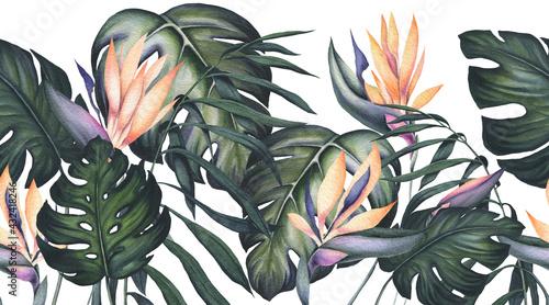 Seamless Border of Watercolor Monstera Leaves and Strelitzia Flowers - fototapety na wymiar