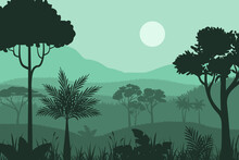 Silhouette Forest BackgroundIllustration And Design