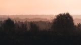 Fototapeta Na ścianę - Mgła ponad lasem w promieniach wschodzącego słońca
