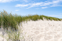Sand Dunes With Dune Grass On A Sunny Day