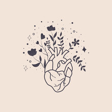 Mystic Heart And Flowers In A Trendy Boho Style. Vector Silhouette Anatomical Heart, Floral, Stars Icons. Vector Illustration Thin Pictogram Of Human Internal Organ