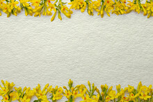 Vintage Frame Consisting Of Many Small Twigs With Yellow  Spring Flowers Arranged In A Chaotic Manner