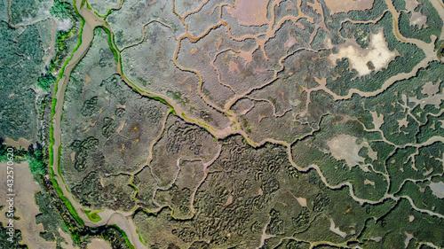 Fotografie, Obraz aerial view of marshland