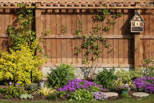 Backyard Full Of Purple Flowers And Bushes Of Plants In Front Of A Wooden Fence With A Birdhouse
