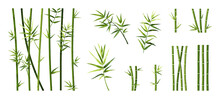 Bamboo Leaf And Stick. Cartoon Tropical Trees Trunks. Green Asian Plants. Straight Segmented Stems And Branches Set. Japanese Decorative Elements For Borders. Vector Chinese Forest