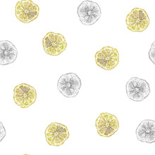 Seamless Watercolor And Pencil Hand Drawn Background Pattern With Bright Yellow Lemons, Healthy Food Repeat Print. Half Lemon Handmade Pattern On White Background. Cut Lemons.