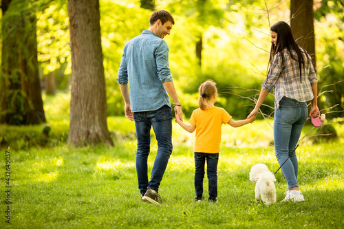 Fotografiet Happy family with cute bichon dog in the park