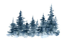 Hand-drawn Watercolor Background With Blue Christmas Trees, Hand-painted Forest.