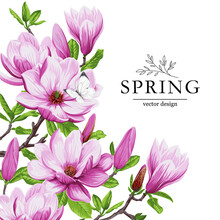 Spring Greeting Card With Magnolia Flowers