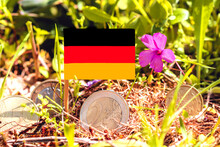 German Flag With Euro Coins With Pink Flower Of Oxalis Articulata Plant,recovery Fund,business Finance And Economy Concept,macro Closeup