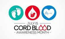 Cord Blood Awareness Month Is Observed Every Year In July, It Is Blood That Remains In The Placenta And In The Attached Umbilical Cord After Childbirth. Vector Illustration.