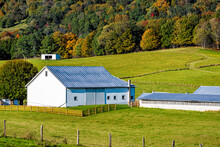 Agricultural Industrial Poultry House Building By Shed Barn On Farm At Rolling Hills By Autumn Forest Mountains Pastoral Landscape Pasture At Monterey And Blue Grass, Highland County Virginia