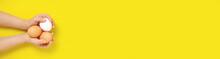 Panorama Banner Child Holds Three Chicken Eggs On Yellow Background.