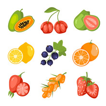 Fruits And Berries Cartoon Icon Set. Papaya, Acerola Cherry, Guava, Lemon, Blackcurrant, Orange, Rosehip, Sea Buckthorn, Strawberry. Vitamin Healthy Food. Education Card For Kids Illustration