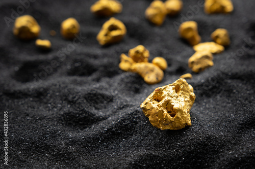 Fototapeta Pure gold from the mine that was unearthed was placed on the black sand. obraz
